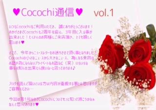 Cocochi通信